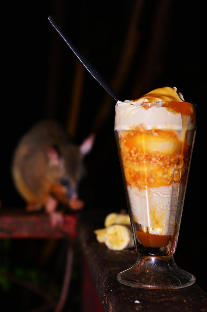possum and 70s sundae