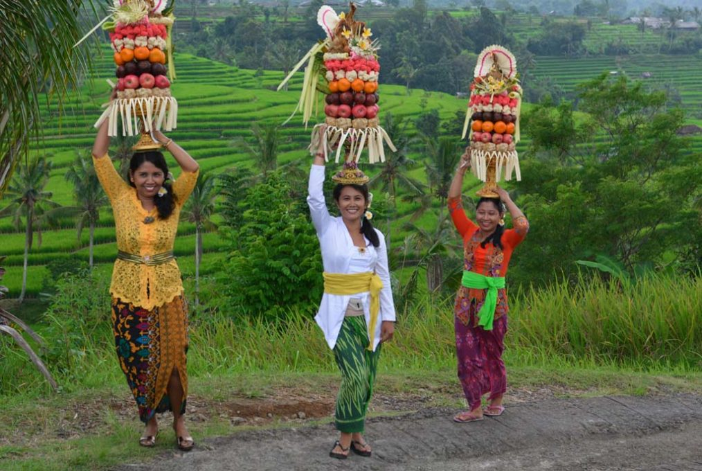 Ladies with traditional fruit baskets at Jatiluwih rice terraces