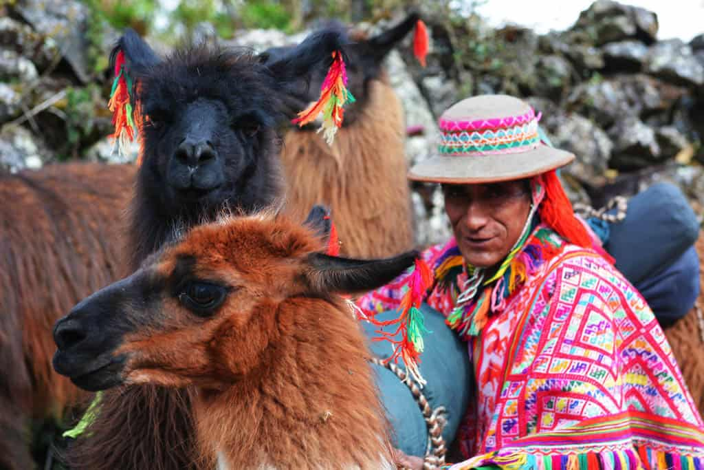 Lamero with Llamas on Lares trek