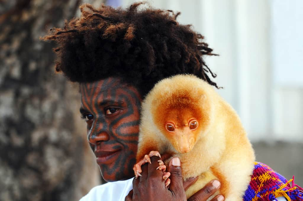 Papua New Guinea lady and her pet cuscus