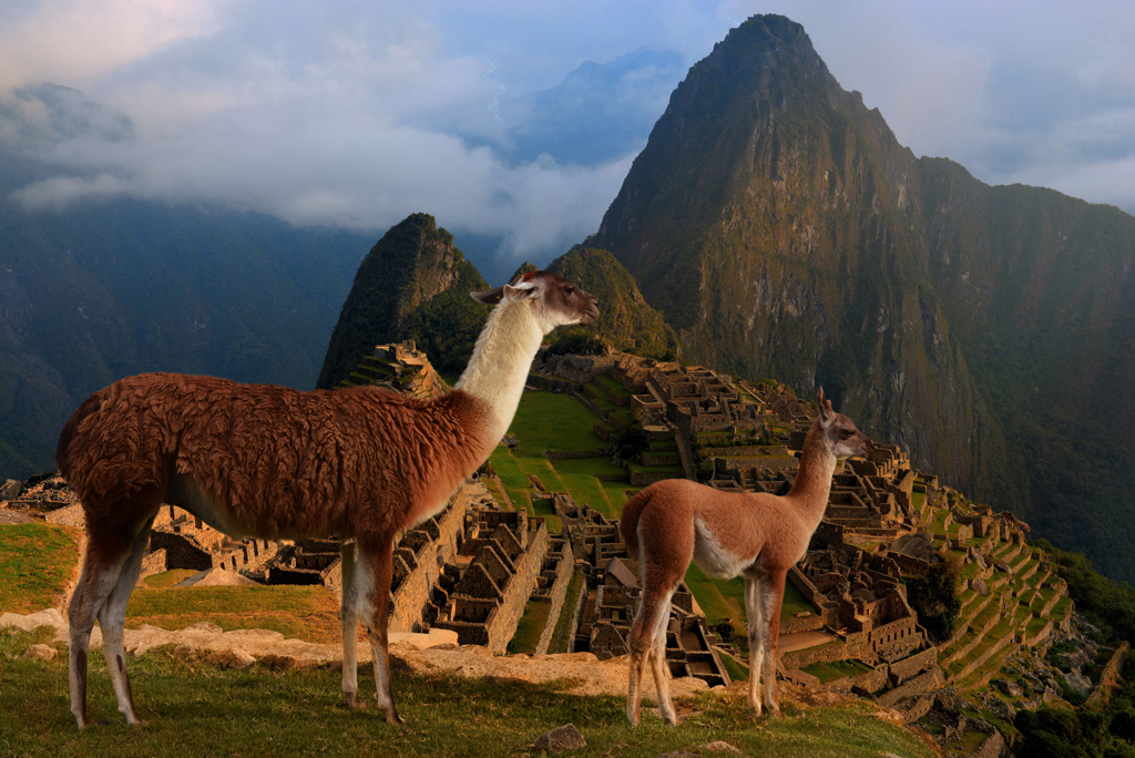 Try and get to Machu Picchu as early as possible