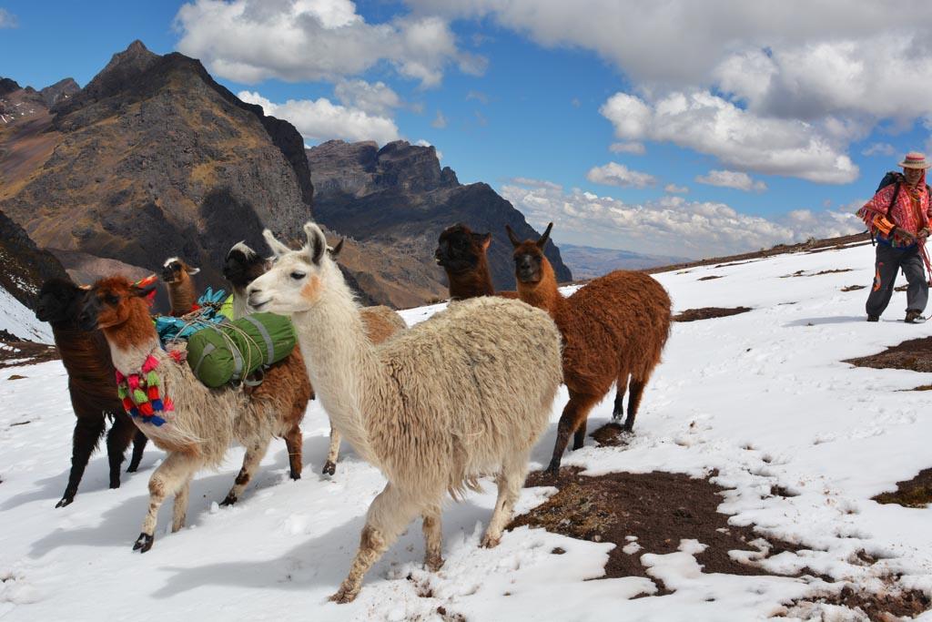 stunning-views-on-the-trek